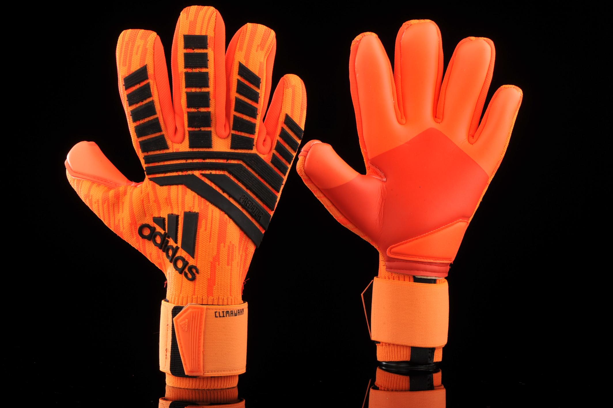 escotilla patrocinado actividad  Goalkeeper gloves adidas Climawarm CW5585 | R-GOL.com - Football boots &  equipment