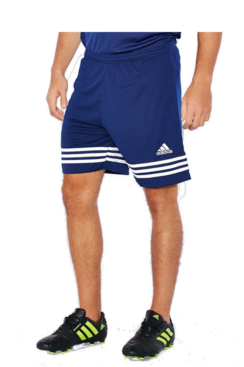 Paso nivel bebida  Shorts adidas Entrada 14 | R-GOL.com - Football boots & equipment