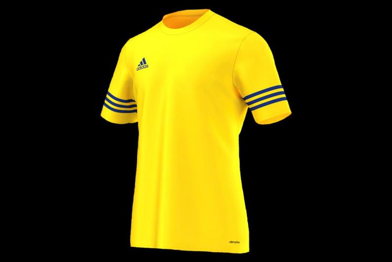 audición Transistor dolor de estómago  Football Shirt adidas Entrada 14 F50489 | R-GOL.com - Football boots &  equipment
